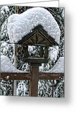 Snowy Feeder Greeting Card