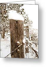 Snowy Fence Post Greeting Card