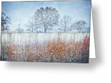 Snowy Field 2 - Winter At Retzer Nature Center  Greeting Card