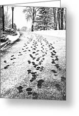 Snowy Footsteps Greeting Card
