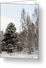 Snowy Forest Edge Greeting Card