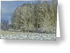 Snowy Landscape #f3 Greeting Card