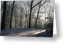 Mystical Winter Landscape Greeting Card