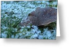 Snowy Leaf Greeting Card