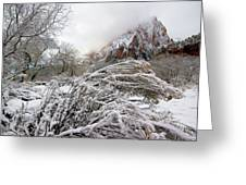 Snowy Mountains In Zion Greeting Card