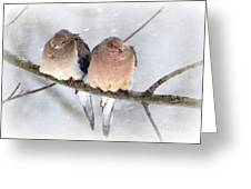 Snowy Mourning Dove Pair Greeting Card