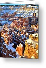 Snowy Overlook Greeting Card