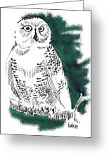 Snowy Owl II Greeting Card