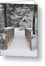 Snowy Path Greeting Card by Catherine Reusch  Daley