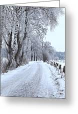 Snowy Path Greeting Card