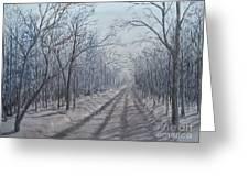 Snowy Road At Dawn  Greeting Card