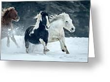 Snowy Run Greeting Card