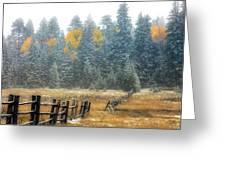 Snowy Silence Greeting Card