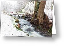 Snowy Stream Landscape Greeting Card