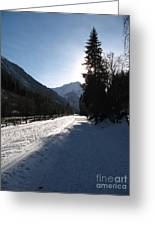 Snowy Track Greeting Card