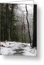 Snowy Trail Quantico National Cemetery Greeting Card