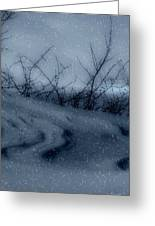 Snowy Tranquility Greeting Card