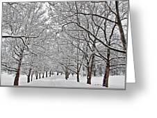 Snowy Treeline Greeting Card