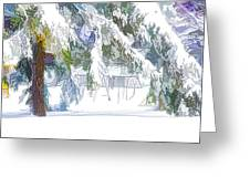 Snowy Trees In Winter Landscape  Greeting Card