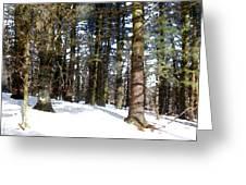 Snowy Wilderness Greeting Card