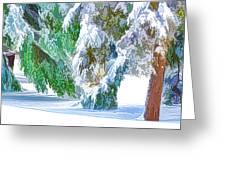 Snowy Winter Greeting Card