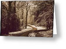 Snowy Woodland Walk One Greeting Card