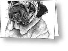 Snuggly Puggly Greeting Card