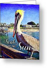 Soak Up The Sun Quote, Cute California Beach Pier Pelican Greeting Card