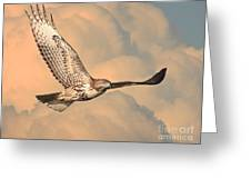 Soaring Hawk Greeting Card by Wingsdomain Art and Photography