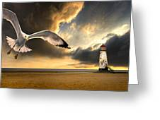 Soaring Inshore Greeting Card by Meirion Matthias