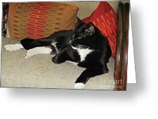 Socks The Cat King Greeting Card
