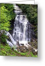 Soco Falls 1 Greeting Card