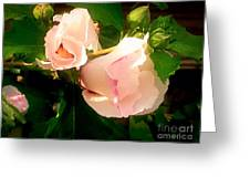 Soft And Pretty Greeting Card