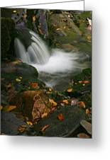 Soft Flow Greeting Card