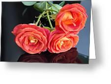 Soft Full Blown Red-orange Roses On Black Background. Greeting Card