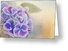 Soft Hydrangeas On Peach Greeting Card