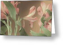 Soft Lilies Greeting Card