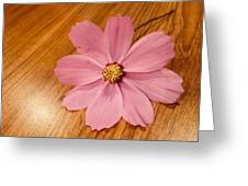 Soft Greeting Card