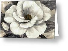 Soft Petals I Greeting Card