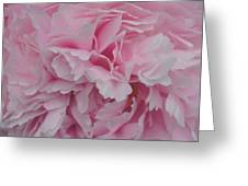 Soft Pink Greeting Card