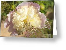 Soft Pink Peony Photography Greeting Card