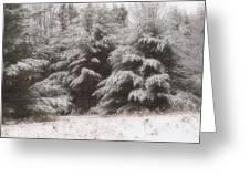 Soft Snow Greeting Card