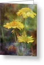 Softly Yellow 3052 Idp_2 Greeting Card