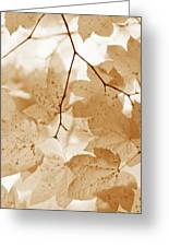 Softness Of Rusty Brown Leaves Greeting Card