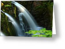 Sol Duc Falls 1 Greeting Card