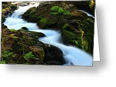 Sol Duc Falls 2 Greeting Card