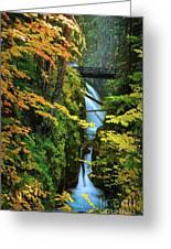 Sol Duc Falls In Autumn Greeting Card