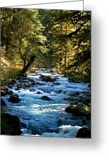 Sol Duc River Above The Falls - Washington Greeting Card