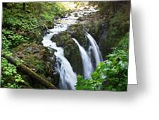 Sol Duc Solitude Greeting Card