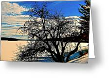 Solace On Silver Lake Greeting Card